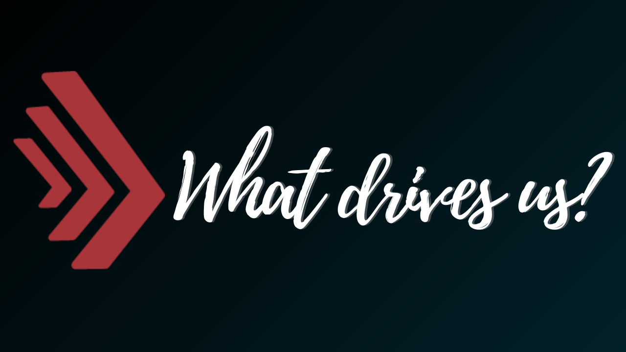 What Drives us?